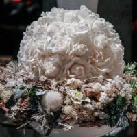composizione natale fiorista bianchi