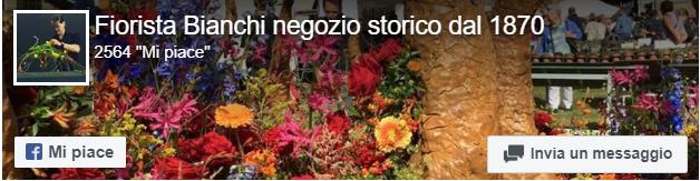 facebook fioristabianchi